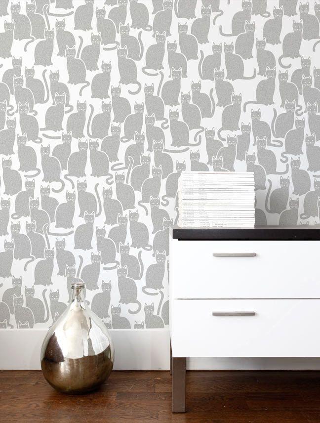 Shadowcat Wallpaper in Glimmer