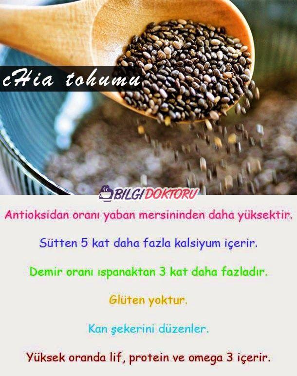 chia-tohumunun-faydalari