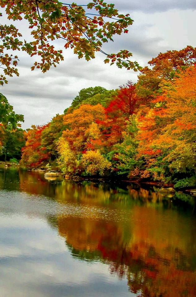 Autumn at the lake house