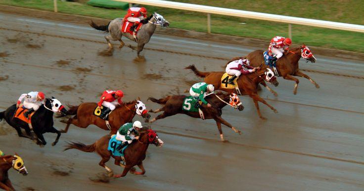 Cómo hacer un juego de mesa de carreras de caballos. Sumérgete en el espíritu de las carreras de caballos creando tu propio juego de mesa de carreras de caballos. Sólo necesitas unos pocos materiales que probablemente ya tienes en tu casa y una buena dosis de imaginación para hacer tu propio juego de mesa. Incluso puedes agregar un componente educativo al juego de mesa de carreras de caballos si ...