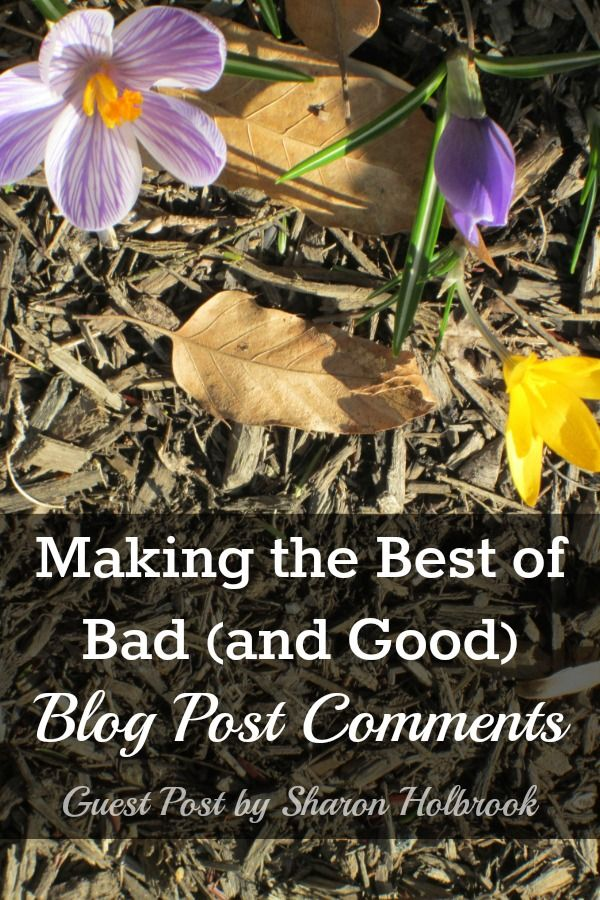 Making the Best of Bad (and Good)  Blog Post Comments - Guest Post by Sharon Holbrook
