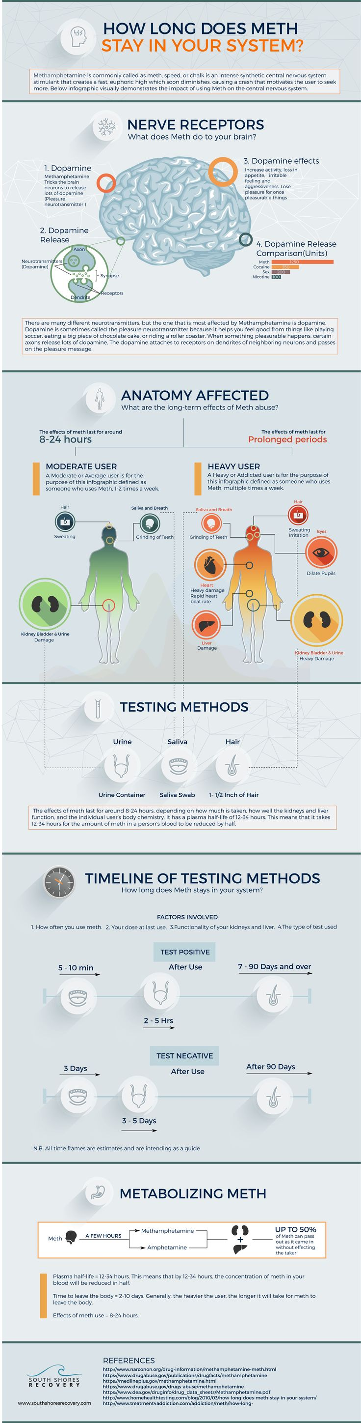 Infographic: Crystal Meth & Your Brain