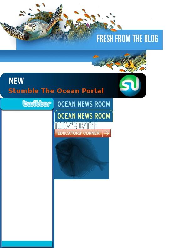 Ocean News Room