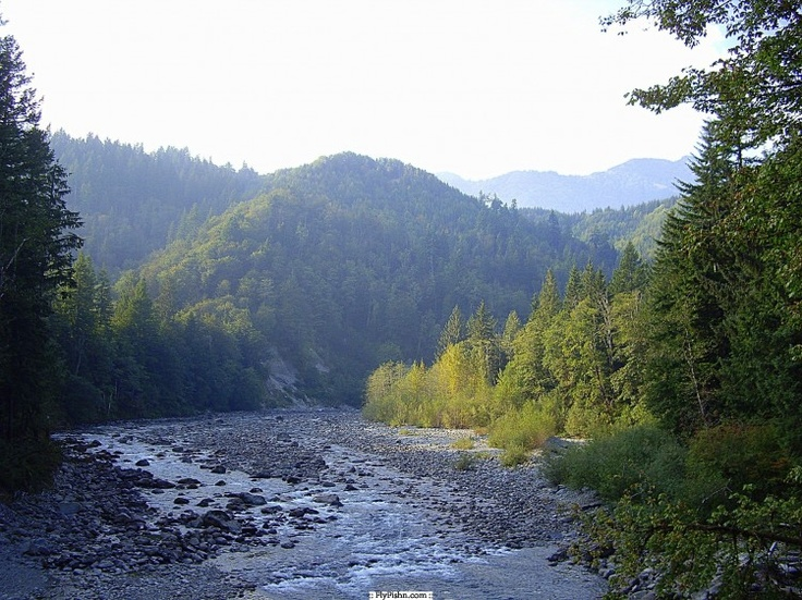 1000 images about fly fishing vistas on pinterest for Snoqualmie river fishing