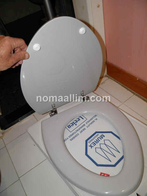 How To Replace The Toilet Seat With Either An Original One Or A Universal Fit Seat With Images Toilet Seat Toilet Replace Toilet