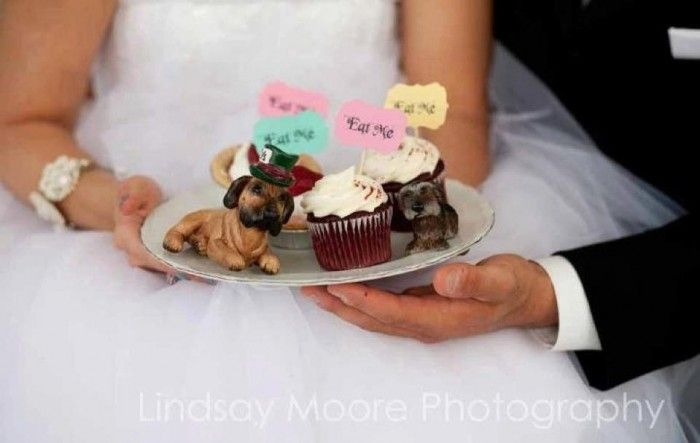 Sarah's Custom Dogs Cake Toppers