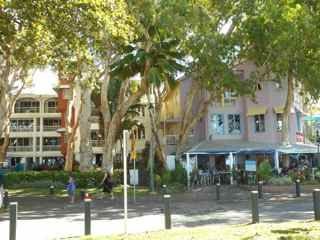 Palm Cove, Queensland, buildings softened, framed and shaded by trees.