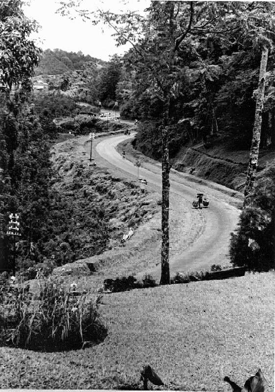 Weg naar de Poentjakpas ten zuidoosten van Buitenzorg. 1939