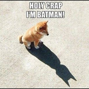 Hahaha, how cute!