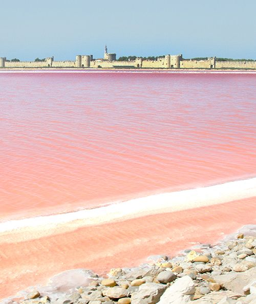 aigues mortes - yes, that pink lake is real.