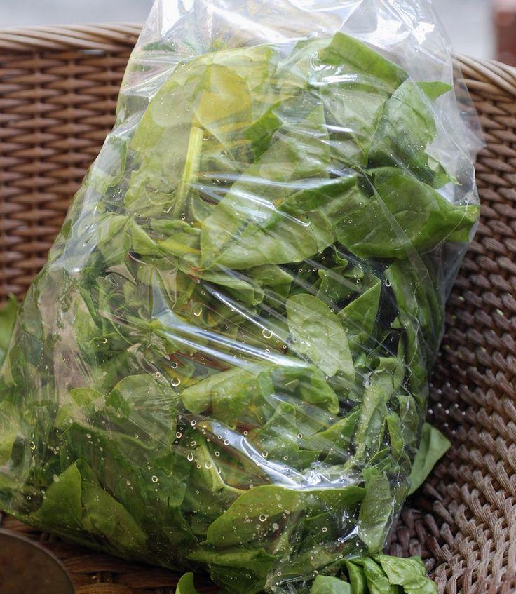 Oubli du sachet de salade à moitié consommée, carottes qui traînent depuis trop longtemps dans le bac de votre réfrigérateur... Il n'est malheureusement pas rare que nous soyons amenés à jeter nos légumes.