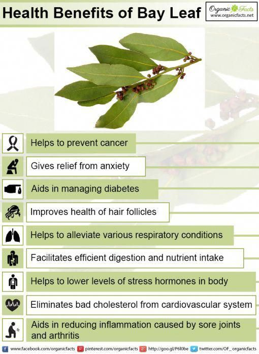 Some of the most impressive health benefits of bay leaves include their ability ...