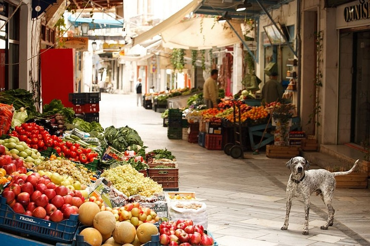 Market street in Ermoupolis and beautiful dog. #syros
