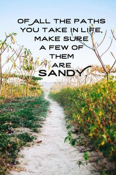 Of all the paths you take in life, make sure a few are sandy  quotes, beach quotes, sunset quotes, sunset sayings, beach saying, sunset beach quotes, surfer quote, surfer saying, beach quotes inspirational, ocean saying, ocean quote, summer quote, summer