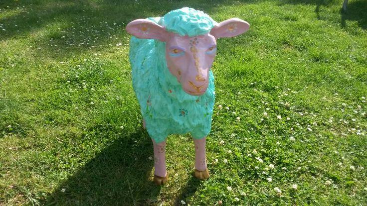 My new friend aloha sheep