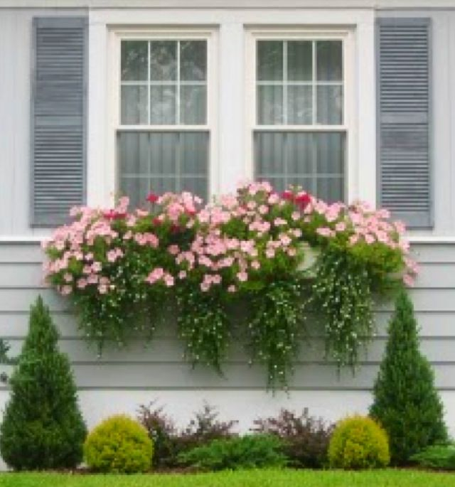 17 Best images about Planters, Hanging Baskets & Window ...