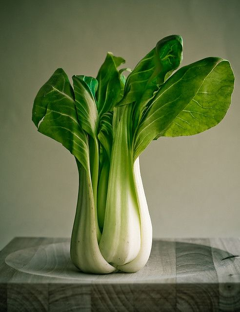 Pak choi. Photo by Andoni Munduate Dorronsoro. One of my favorite foods EVER!