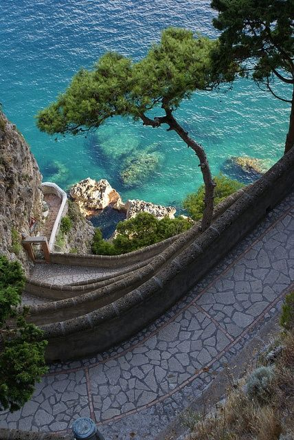 bluepueblo:  Path to the Sea, Isle of Capri, Italy photo via...