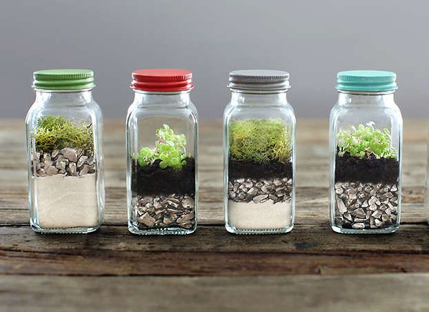 Shaking Things Up  After you spice up your dinners, bring a little of the same to your shelf through a collection of recycled spice shaker terrariums. Ashley from 7th House on the Left made these for A Bullseye View using empty Archer Farms herb jars—perfect for a quick hostess offering or project with the kids.