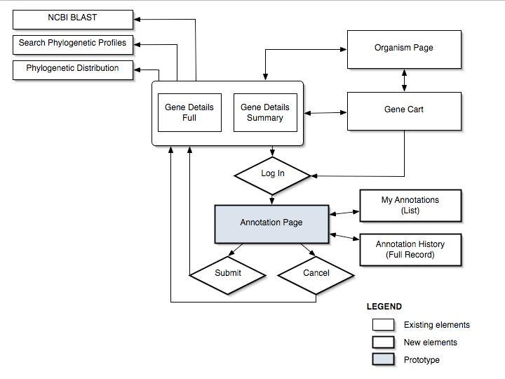 business process flow diagram swimlane