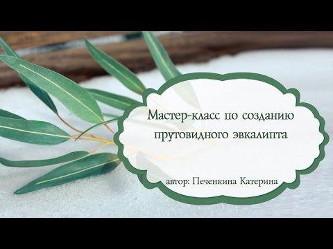 "Мастер - класс ""Прутовидный эвкалипт"" - YouTube"