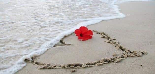 تفسير رؤية البحر في المنام للعزباء Beach Heart Love Heart Hibiscus