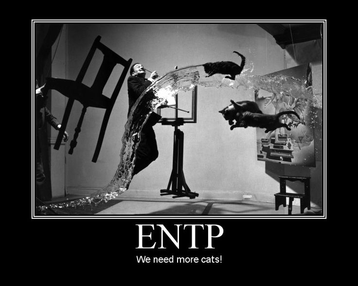 entp and infj dating another