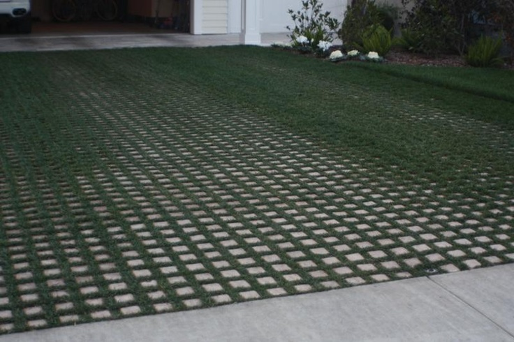driveway grass and concrete