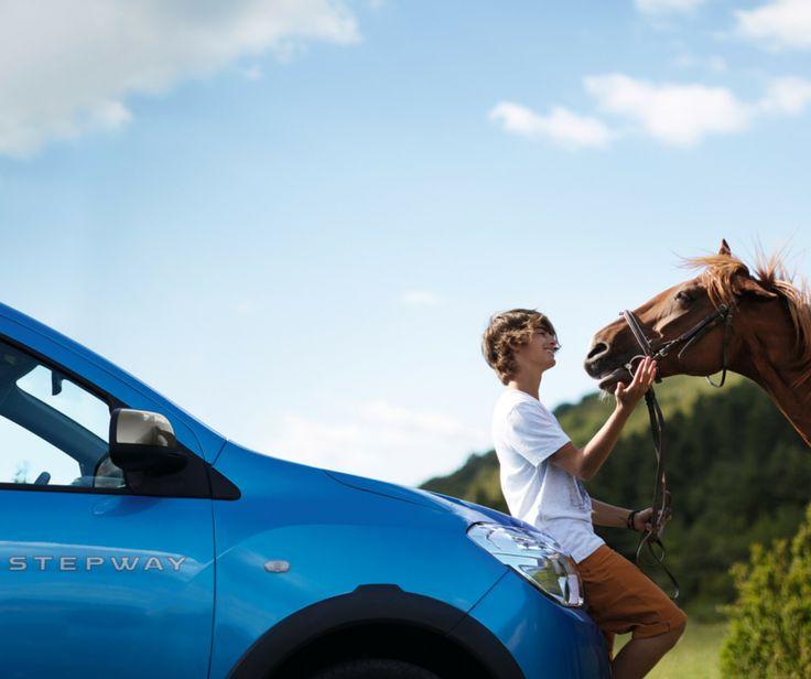 #SfatDacia: Atunci când întâlniți animale în trafic, reduceți viteza și așteptați să treacă pentru a vă continua drumul (sau, dacă stăpânii vă permit, jucați-vă cu ele :D).