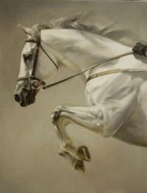 by Jaime Corum