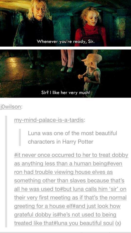Luna's amazing