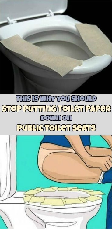 People don't want to sit on any toilet when they go to the bathroom, because they are afraid of all the diseases they can get and some toilets are disgusting. Some toilets are filthy and it can be a very ugly picture. But when it's time to go, you don't really have any choice. The …