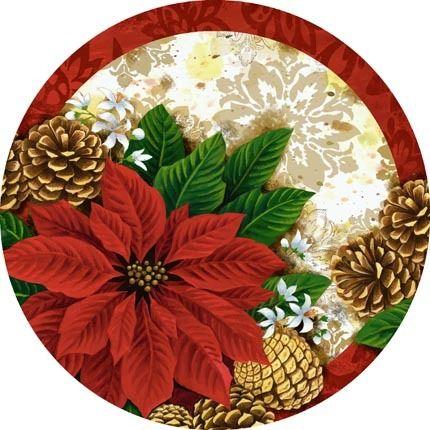 christmas-navidad-flor de navidad