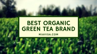 Green tea has been around for centuries and has always represented a substitute to the coffee mug for many people, though a question arises in everybody's minds: which is the best organic green tea brand?
