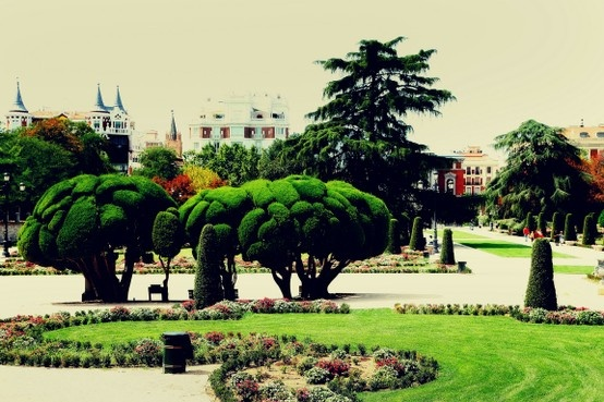 #Travel Photography Buen Ritero Park #Madrid, Spain