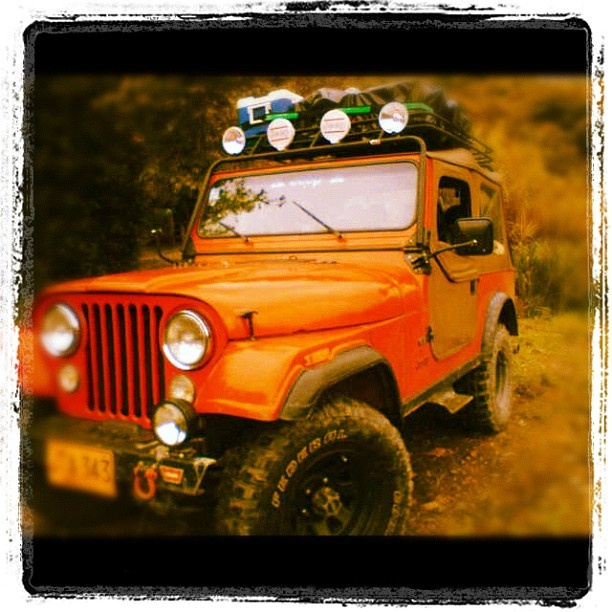 Jeep Wrangler 1995 For Sale In Charleston Oregon: 90 Best Real Women Drive Jeeps! Images On Pinterest