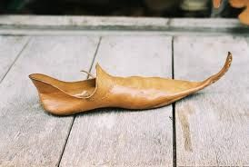La plebe la podia llevar de 15cm, los caballeros de 37,5cm, la nobleza hasta de 60cm, fueron anchandose hasta producir el llamado calzado en pico de pato.