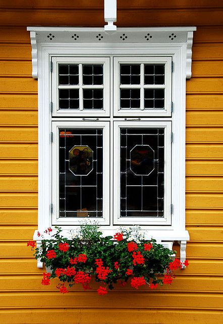Love that mustardy color w/white trim and flowerbox. Not a color we see on American houses, but common in Norway. Such a pretty window!