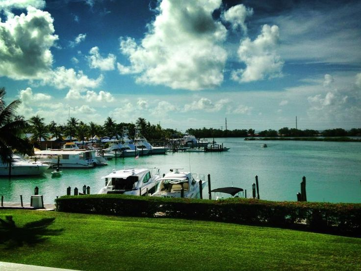 Top 99 ideas about fishing on pinterest fishing charters for Hawks cay fishing
