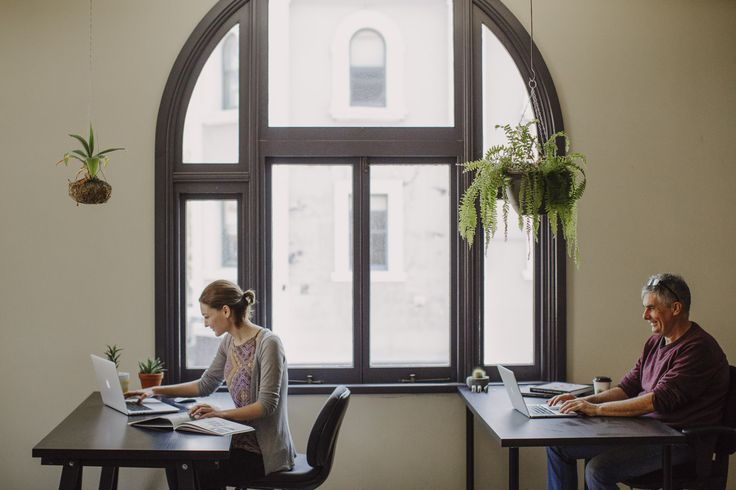 The Roost   Coworking Newcastle   Creative Spaces