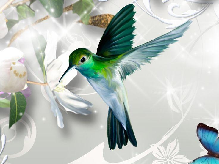 Abstract hummingbird | Hummingbird | HD Wallpapers ...