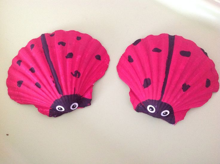 17 meilleures images propos de coquillage sur pinterest chihuahuas coquillages et recherche - Bricolage avec des coquillages ...