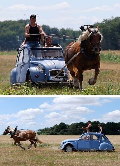 Citroën 2CV + 1 cheval