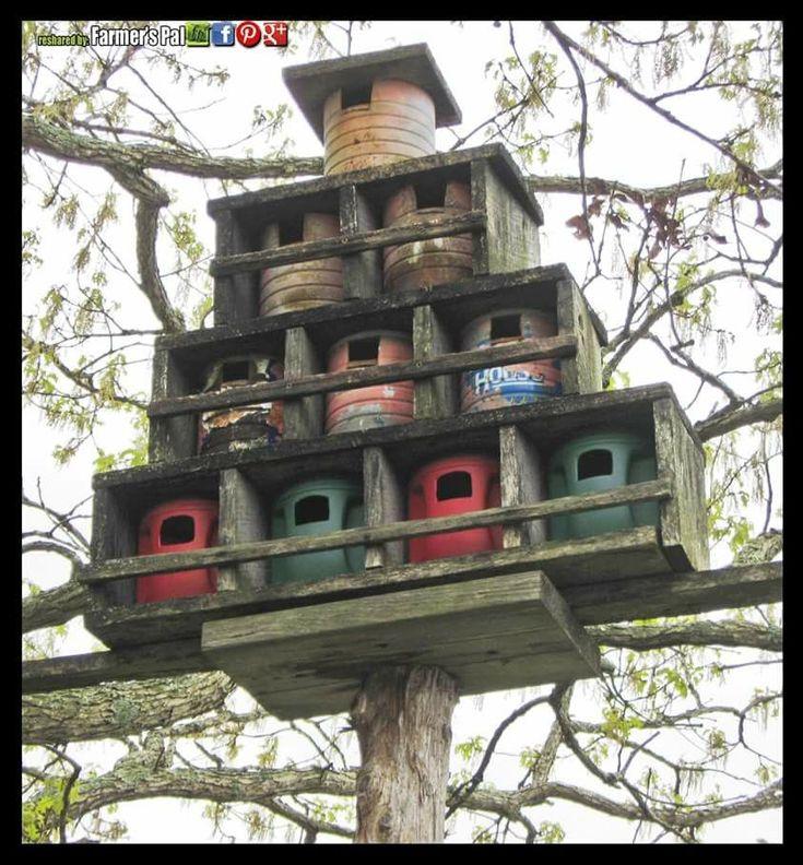 5848 Best Bird Gardens Images On Pinterest Bird Houses