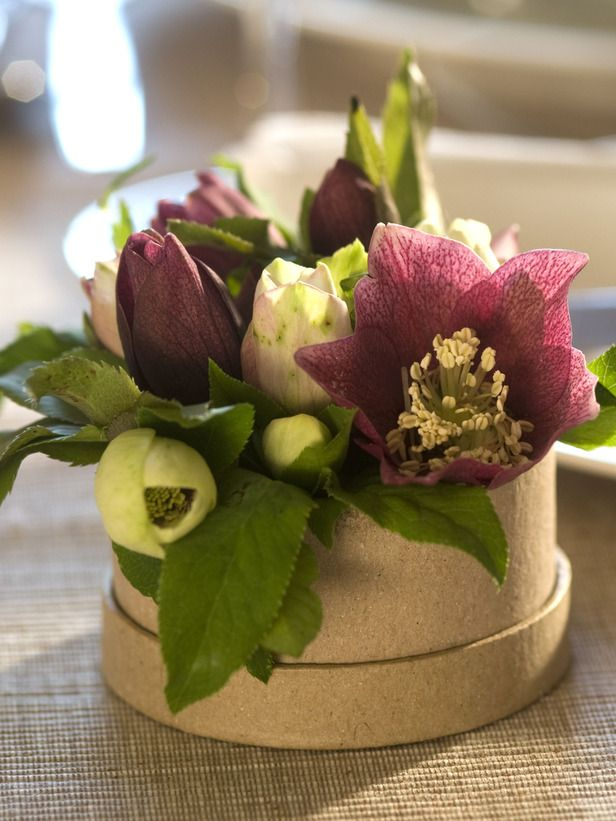 Individual Place Setting: Fresh Flowers  Cut fresh flowers from plants that flourish in a winter garden, such as Christmas rose (Helleborus niger), Lenten rose (Helleborus orientalis), or witch hazel (Hamamellis mollis). Put them in a small foil-lined box or pot and add a little water.