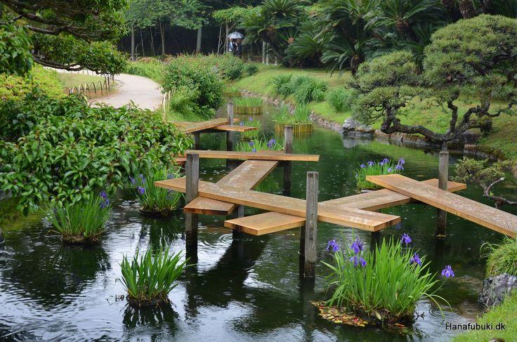 Iris in May, Korakuen garden Okayama