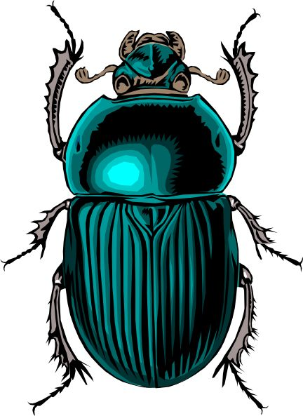 scarab beetle tattoo - Love that turquoise/teal color