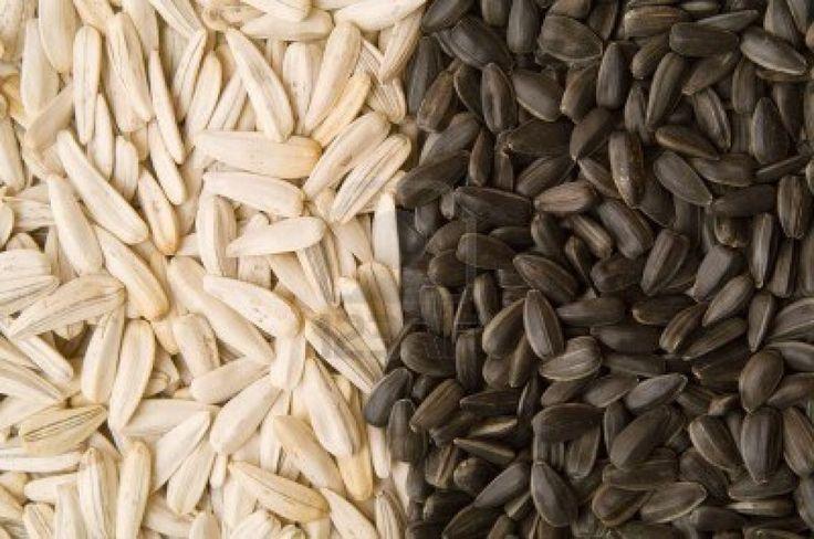 Virtù e segreti dei semi di girasole, di sesamo, di lino e di chia | Eticamente.net