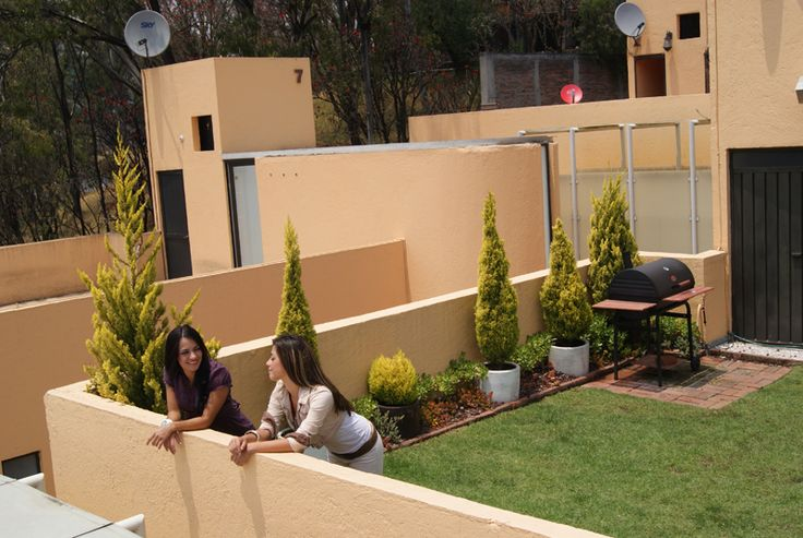 Azoteas verdes techos pinterest azoteas verdes for Diseno de jardines en azoteas