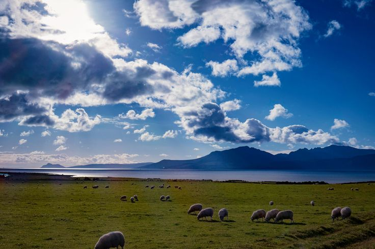 Scalpsie Bay with the Isle of Arran beyond.  Photo by Paul Stanton.